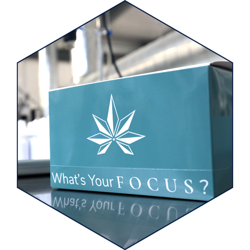 Focus Hemp Co wholesale boxes