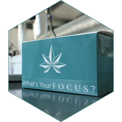 Focus Hemp Co wholesale box