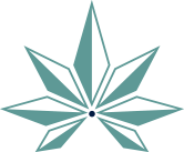 Focus Hemp Co logo icon